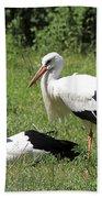 White Storks Beach Towel