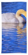 White Swan Drinking Water In A Pond Beach Towel