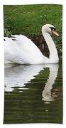 White Swan In Belgium Park Beach Towel