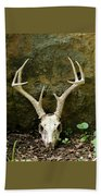 White-tailed Deer Skull In The Woods Beach Towel