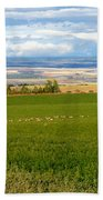 White Tails In The Field Beach Towel