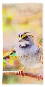 White Throated Sparrow - Digital Paint 1                                             Beach Towel