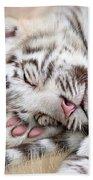 White Tiger Dreams Beach Towel by Carol Cavalaris