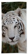 White Tiger Portrait Beach Towel