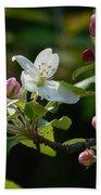 White Woodland Crabapple Flowers Beach Towel