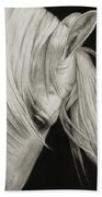 Whitefall Beach Towel by Pat Erickson