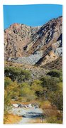 Whitewater Reserve Beach Towel