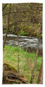 Whitewater River Spring 43 Beach Towel