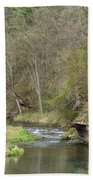 Whitewater River Spring 45 B Beach Towel