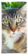 Who Are You? Beach Towel