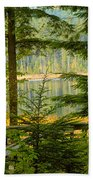 Whonnock Lake Through The Trees Beach Towel