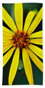 Whorled Rosinweed Beach Towel