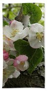 Wild Apple Blossoms Beach Towel