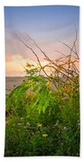 Wild At Sunrise Beach Towel