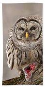 Wild Barred Owl With Prey Beach Towel