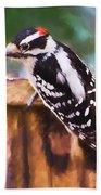 Wild Birds - Downy Woodpecker  Beach Towel