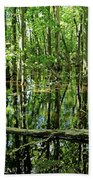 Wild Goose Woods Pond Iv Beach Towel