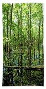 Wild Goose Woods Pond Vii Beach Towel