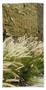 Wild Grass Along An Alley Wall Beach Towel