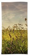 Wild Grass And A Lonely Cloud Beach Towel