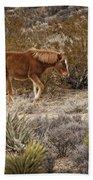 Wild Horse At Cold Creek Beach Towel