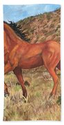 Wild Horse In Virginia City, Nevada Beach Towel