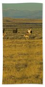 Wild Horses And Antelope-signed-#2216 Beach Towel