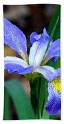 Wild Iris 3 Beach Towel