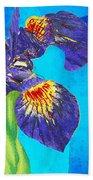 Wild Iris Art By Sharon Cummings Beach Towel