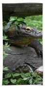 Wild Komodo Dragon Crawling Through Nature Beach Towel