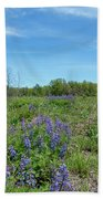 Wild Lupine Beach Towel