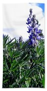 Wild Lupines Beach Towel