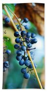 Wild Michigan Grapes Beach Towel