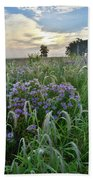Wild Mints And Foxtail Grasses At Glacial Park Beach Towel