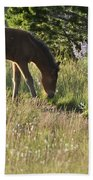 Wild Mountain Lupine Beach Towel