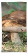 Wild Mushroom Beach Sheet