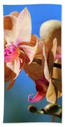 Wild Orchid Beach Towel