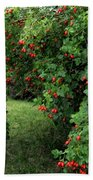 Wild Rosehips Beach Towel