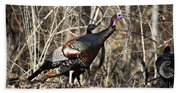wild Turkey 2 Beach Towel