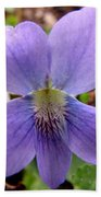 Wild Violet 2 Beach Towel