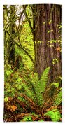 Wild Wonder In The Woods Beach Towel