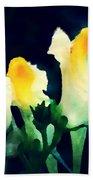 Wild Yellow Flowers On Dark Background Beach Towel