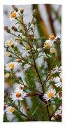 Wildflower,  Beach Towel