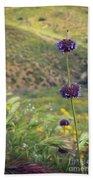 Wildflower Beach Sheet