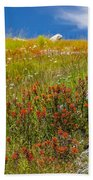 Wildflower Meadow With Indian Paintbrush Beach Towel