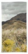 Wildflower Mountain Beach Towel by Andrea Hazel Ihlefeld