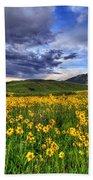 Wildflower Storm Beach Towel