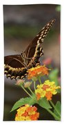 Wildflower Swallowtail Beach Towel