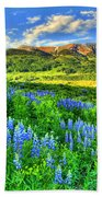 Wildflower Wonder Beach Towel