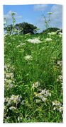 Wildflowers Along Country Road In Mchenry County Beach Towel